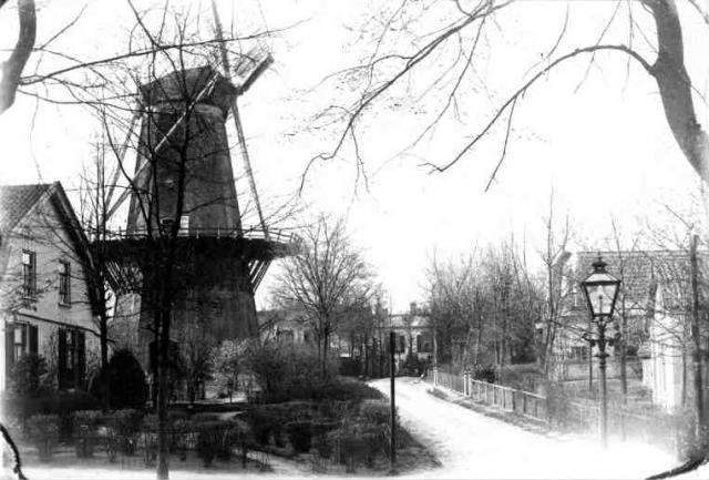 Boomberglaan 1903